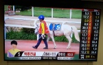 Sheraton Walkerhill Korean Racing Association Off-Track Betting